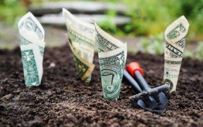 The Best Ways How to Make Your Money Work for You